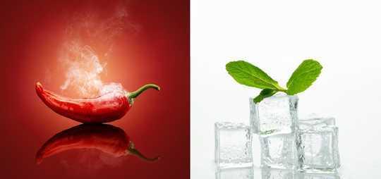 كاري حار ، شيدر بطاطا وشمندر موحل - بعض الحقائق المدهشة حول طعامك