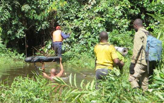 क्यों Rainforests मानवता की मदद करने के लिए अपनी शक्ति खो रहे हैं