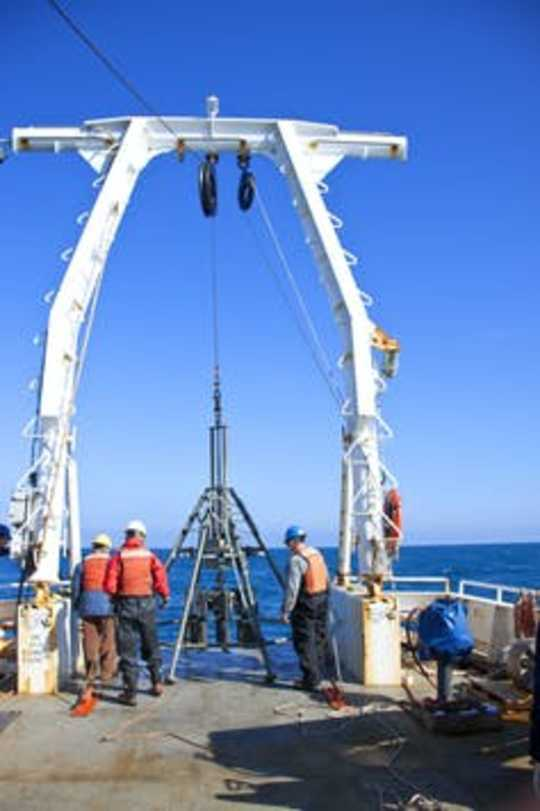 Seabed Fossils Show The Ocean Is Undergoing A Change Not Seen For 10,000 Years