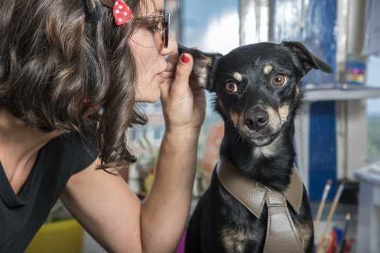 如何與你的狗說話-根據科學
