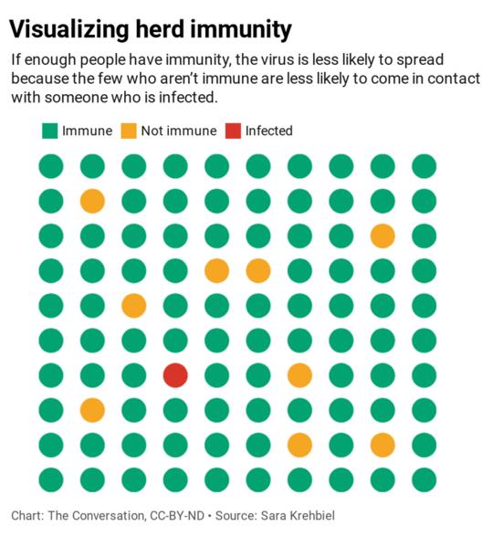 Почему иммунитет от стада не решит нашу проблему с COVID-19