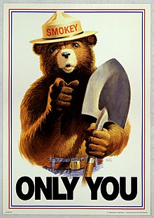 Uncle Sam tyyli Smokey Bear Only You.jpg