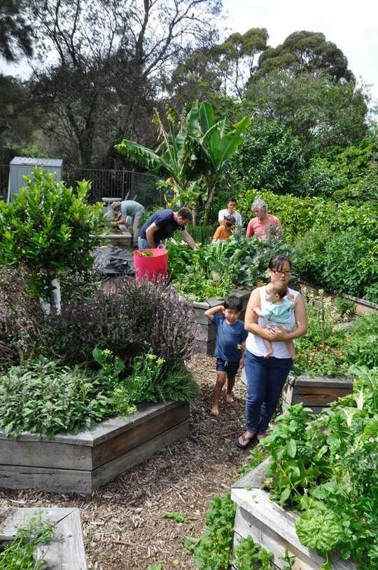 कैसे एक वन्यजीव हेवन में अपने बगीचे या बालकनी को बदलने के लिए