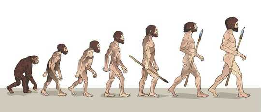 Perché quella famosa immagine March of Progress è sbagliata