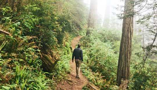 Bagaimana Wildness Di Taman Dapat Membuat Anda Merasa Lebih Baik