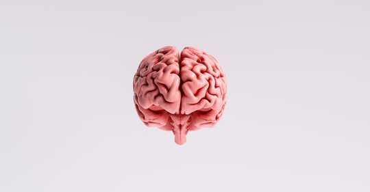 冠狀病毒如何影響大腦