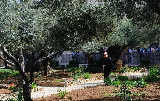 僧侶,社會隔離專家,在孤立中尋找力量