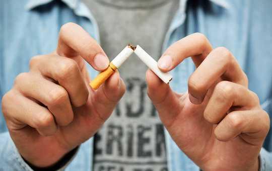 नया शोध: धूम्रपान छोड़ने से सुरक्षात्मक फेफड़े की कोशिकाएं बढ़ती हैं