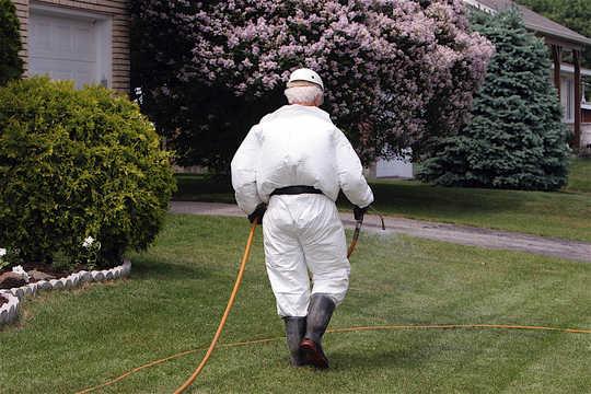 Hva du kan gjøre for å beskytte barna dine mot plantevernmidler