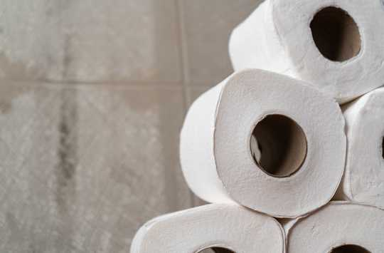 A Toilet Paper Run Is Like A Bank Run And The Economic Fixes Are About The Same