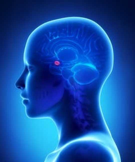 Pelko voi levitä henkilöstä henkilölle nopeammin kuin koronavirus