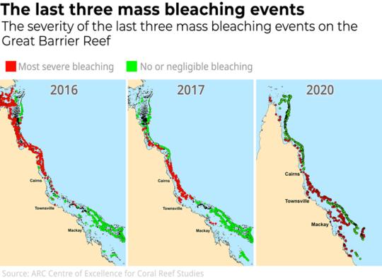 Acabamos de passar duas semanas examinando a Grande Barreira de Corais. O que vimos foi uma tragédia total