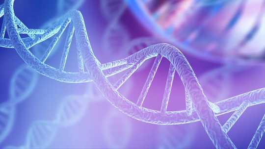 衰老:隨著年齡的增長,表觀遺傳的時鐘如何變慢