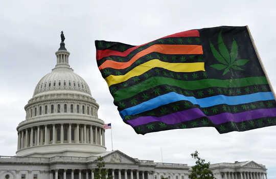 Menghalalkan Marijuana Mengambil Langkah Penting