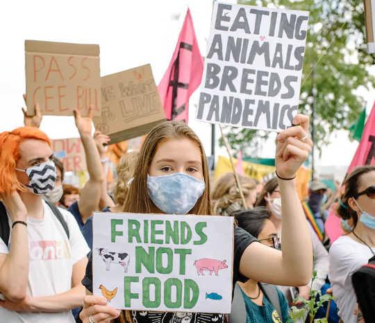 Des manifestants pour les droits des animaux défilent à Londres, au Royaume-Uni, le 1er septembre 2020.