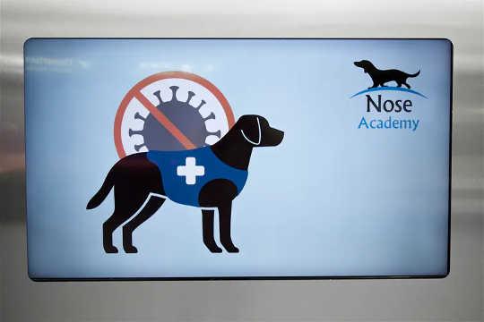 'N Teken stel reisigers in kennis van 'n loodsstudie op die lughawe in Helsinki wat gratis koronavirustoetse aanbied met honde om reukeinfeksies op te spoor.