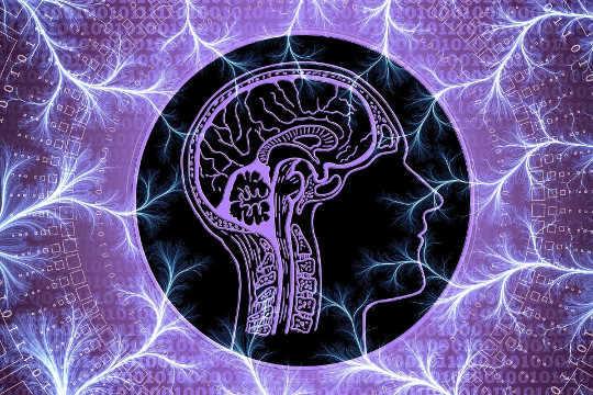 意見を異にするのに多くの頭脳の不動産が必要な理由