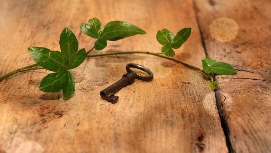foto van een sleutel en een wijnstok