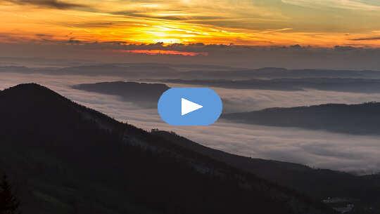 02 26 video del combate a la armonía