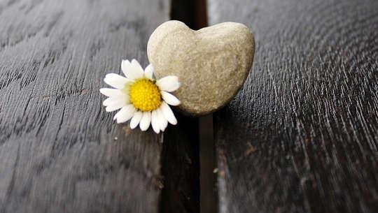 Moeilijke beslissingen nemen: kiezen met op het hart gebaseerde beslissingen