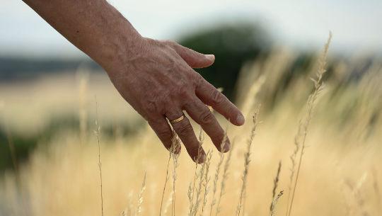 Métodos de redução de estresse: pontas dos dedos acalmam a mente