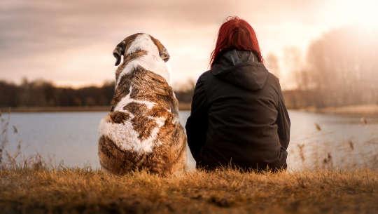 Peraturan Pertama untuk Berjaya Meditasi: Jangan Dipengaruhi oleh Apa Yang Dilakukan Orang Lain