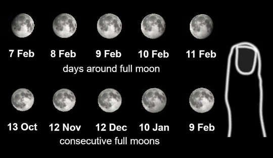 Size comparisons of the Moon for consecutive days and full moons.