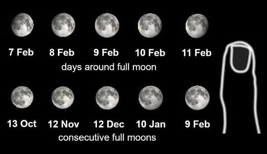 연속 된 날과 보름달에 대한 달의 크기 비교.