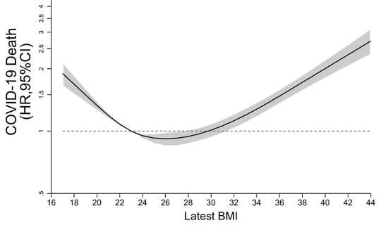 Ланцетный диабет и эндокринология