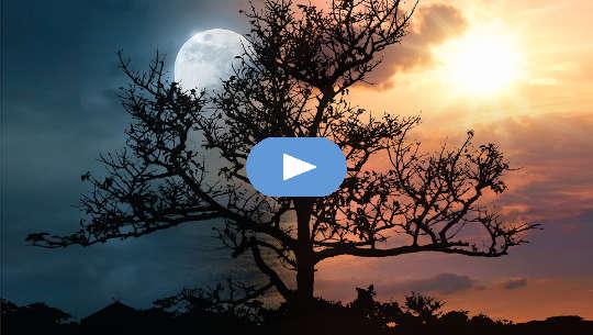 Horóscopo Semana: 31 de maio - 6 de junho de 2021 (vídeo)