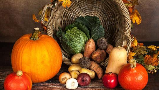 万物生长的季节:我们祖先的饮食方式