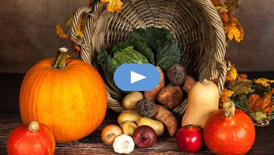 Kausi kaikelle: tapa, jolla esi-isämme syövät (video)
