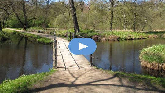 चलने का पुल