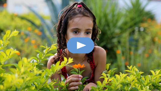 ung flicka i ett fält av växter och blommor