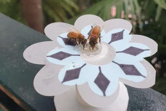 Honungsbin som matar på falska blommor.