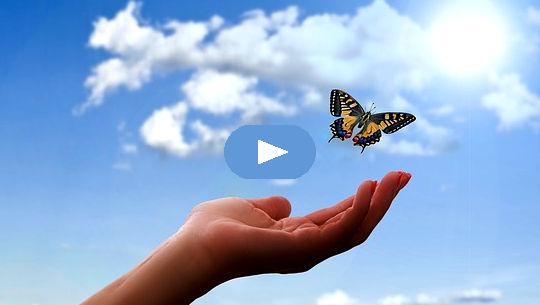 fjäril över en öppen hand och öppen himmel