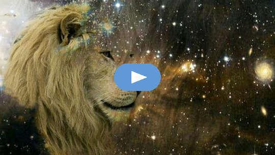 leijonan naama katselee tähtiä