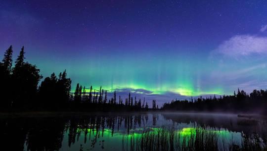 Aurora Borealis (Northern Lights) Foto von Chris Moss am 30. August 2021, Trapper Creek, Alaska, USA