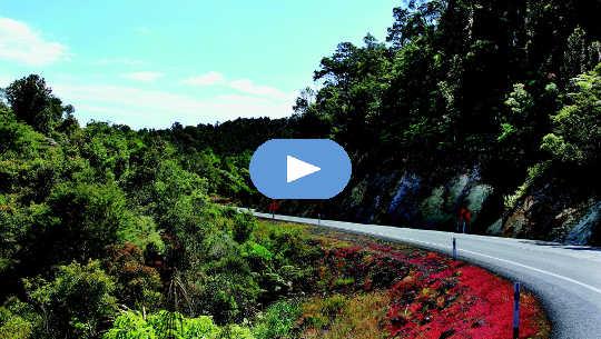 kurvenreiche Straße in Neuseeland
