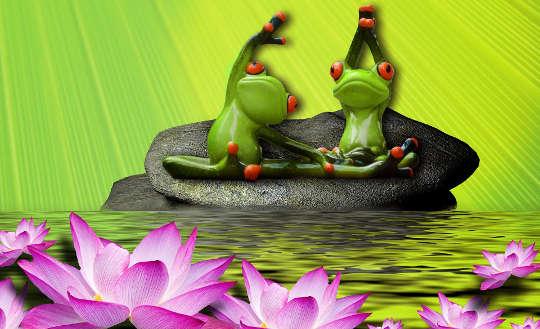 två grodor som gör yoga sitter på en liljekudde