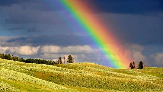 arco-íris sobre um campo