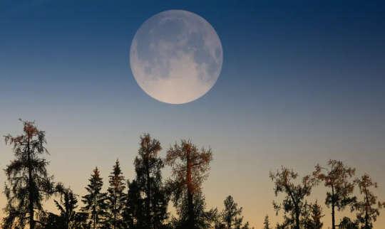 Суперлуна: как иллюзия заставляет полную луну казаться больше, чем она есть на самом деле