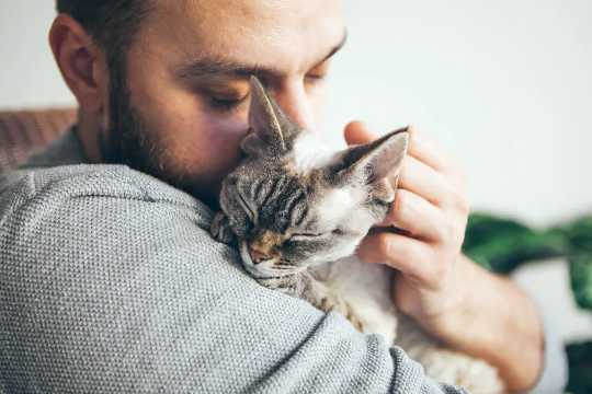 Tác động của thú cưng lên sức khỏe tinh thần và sức khỏe của chúng ta