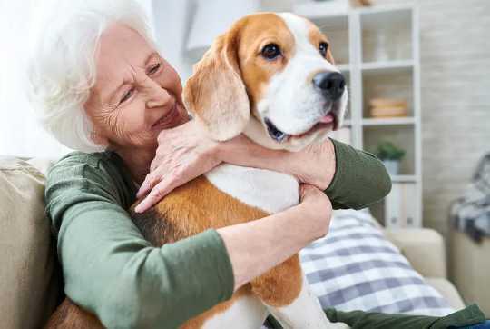 O impacto que nossos animais de estimação têm em nossa saúde mental e bem-estar