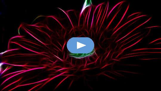 Transformasjon: Å ta tilbake kraften vår fra mennesker og parasitter (video)