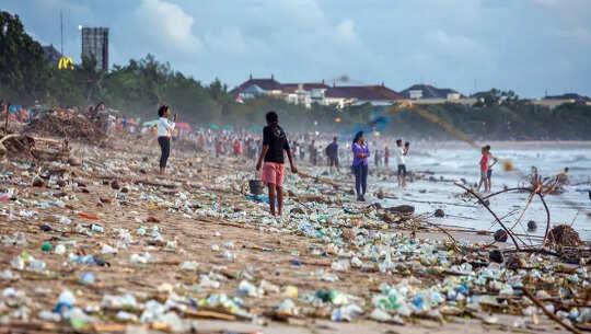 क्यों महासागर प्रदूषण मानव स्वास्थ्य के लिए एक स्पष्ट खतरा है