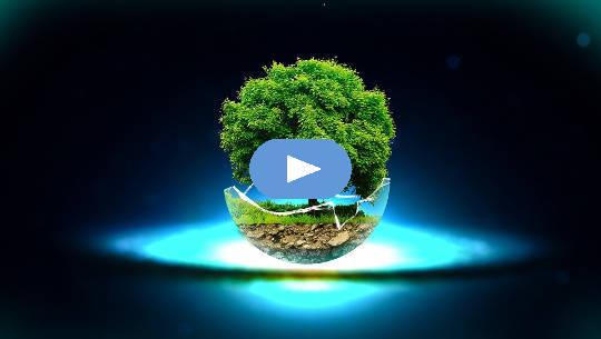 흙에서 흙으로 : 생명의 거름은 우수한 성장 잠재력을 만듭니다