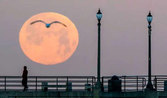 Questa superluna ha una svolta: aspettatevi inondazioni, ma un ciclo lunare sta mascherando gli effetti dell'innalzamento del livello del mare