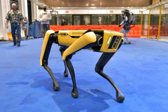Robot sắp xuất hiện và sự sụp đổ sẽ gây hại lớn cho các cộng đồng bị thiệt thòi