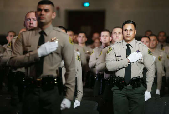Las academias de policía dedican solo el 3.21% de la formación a la ética y el servicio público